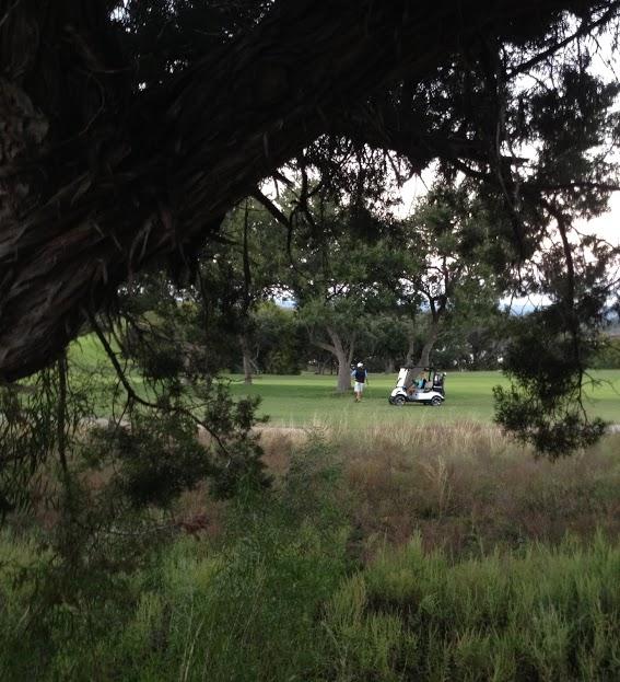 Flintrock Falls golf